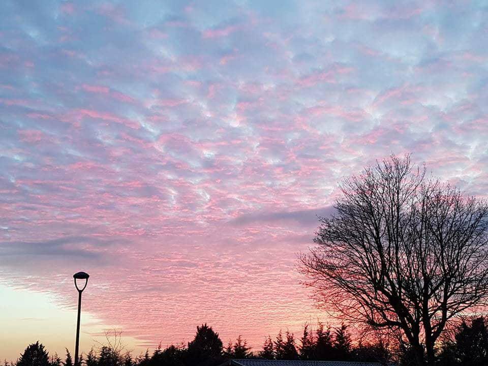 Cheddar Sky